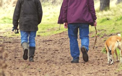 Actividad física, familia y Esclerosis Múltiple                                        5/5(7)