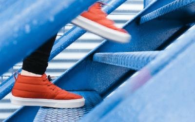 Gestión del miedo ante la actividad física en EM                                        5/5(11)