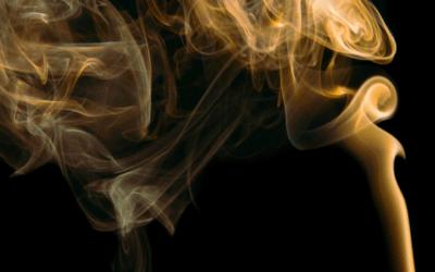 Conoce las repercusiones del tabaco en la actividad física y la EM                                        5/5(2)