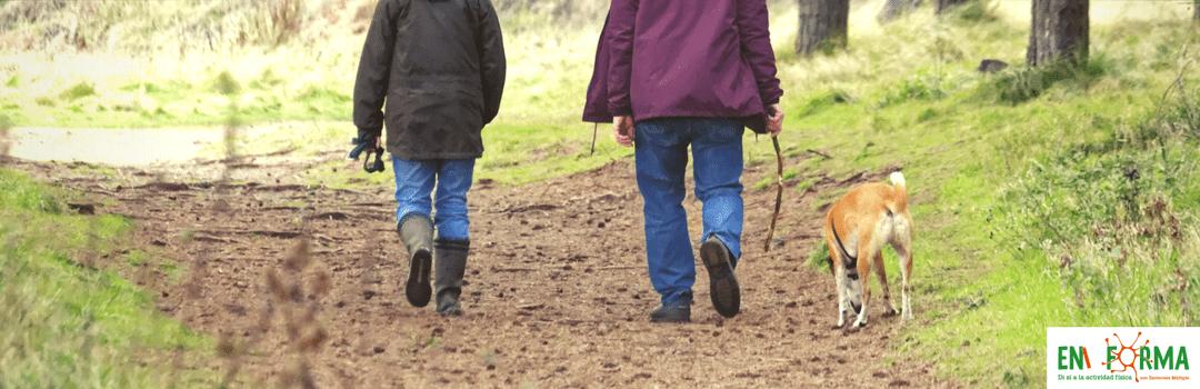 Actividad física, familia y Esclerosis Múltiple                                        5/5(14)
